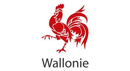 REGION WALLONIE